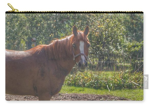 1010 - Froede Roads' Chestnut Brown Carry-all Pouch