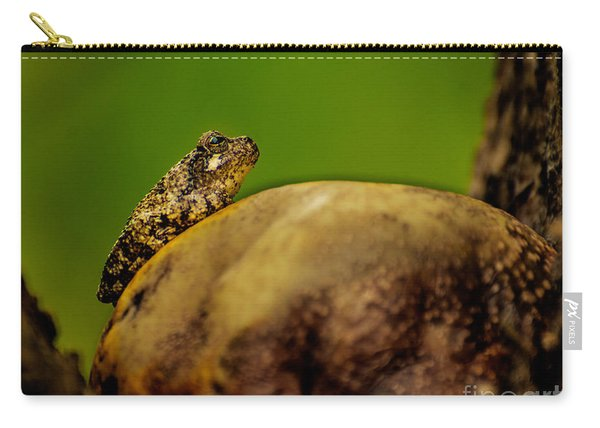 Frog Waits Carry-all Pouch