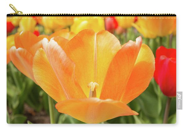 Carry-all Pouch featuring the photograph Front Of The Tulips by Brian Hale