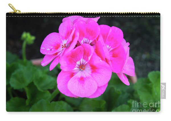 Full Bloom Geranium Carry-all Pouch