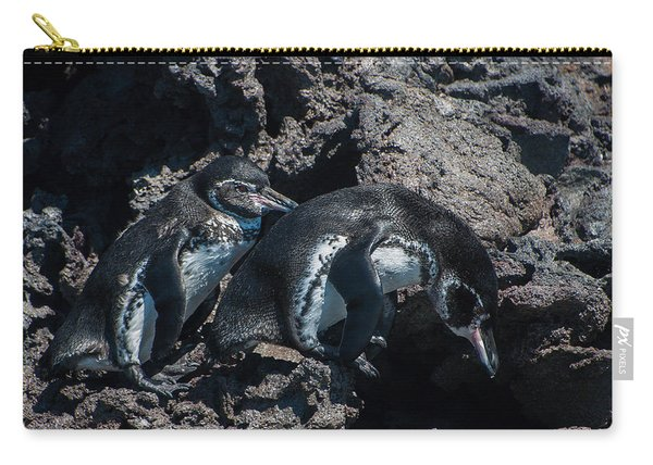 Galapagos Penguins  Bartelome Bartholomew Island Galapagos Islands Carry-all Pouch