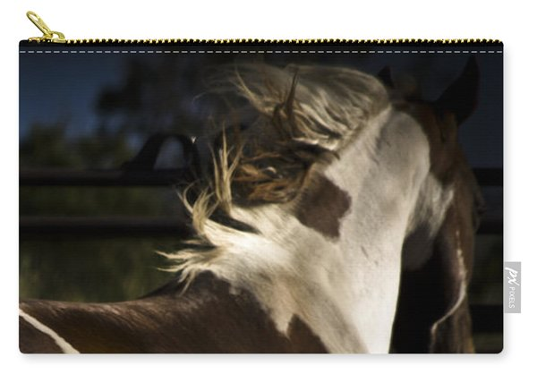 Carry-all Pouch featuring the photograph Galisteo 1 by Catherine Sobredo
