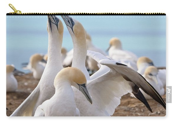 Gannets Carry-all Pouch