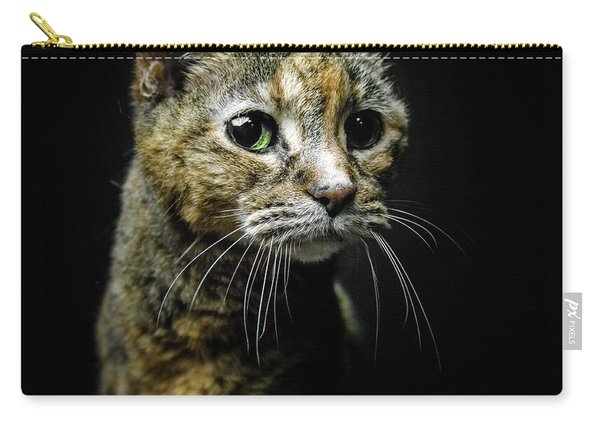 Geraldine Carry-all Pouch