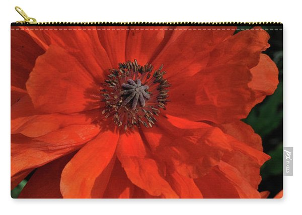 Giant Mountain Poppy Carry-all Pouch