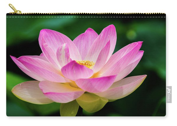 Gigantic Lotus Red Lily Carry-all Pouch