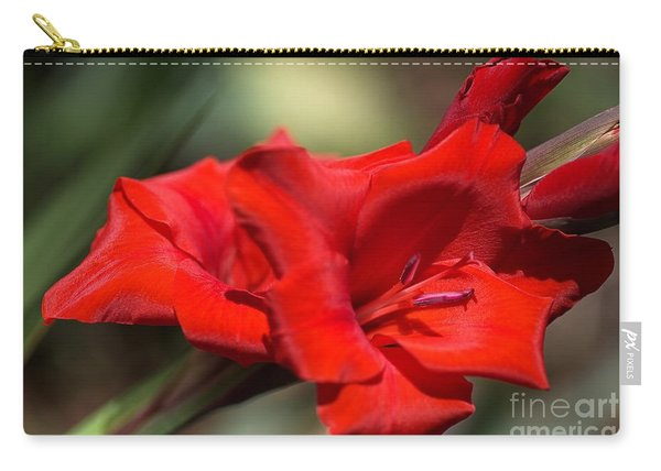 Gladioli Manhattan Variety  Carry-all Pouch