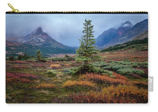 Carry-all Pouch featuring the photograph Glen Alps In The Autumn Rain by Tim Newton