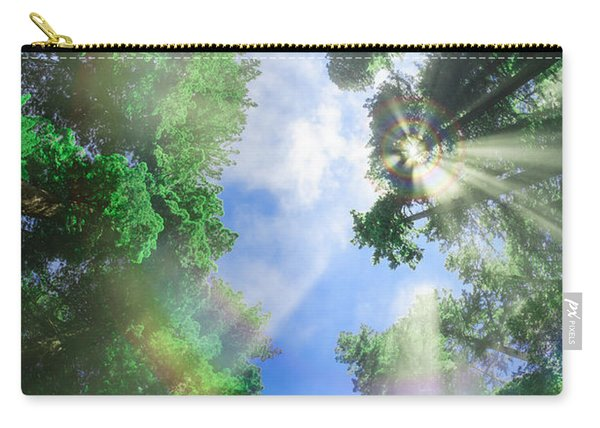 Glory Amongst Redwoods Carry-all Pouch
