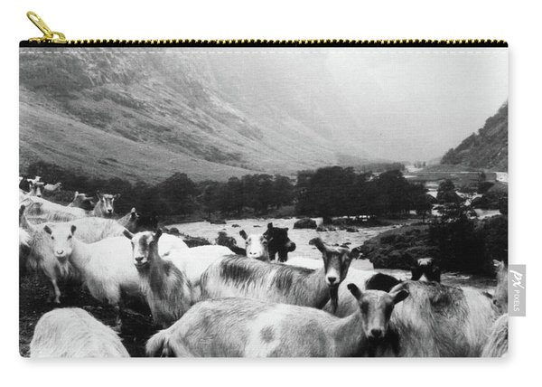 Goats In Norway- By Linda Woods Carry-all Pouch
