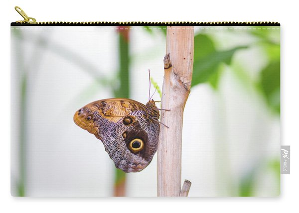Carry-all Pouch featuring the photograph Gold And Brown Butterfly by Raphael Lopez