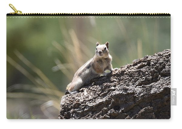 Carry-all Pouch featuring the photograph Golden Mantled Ground Squirrel by Margarethe Binkley