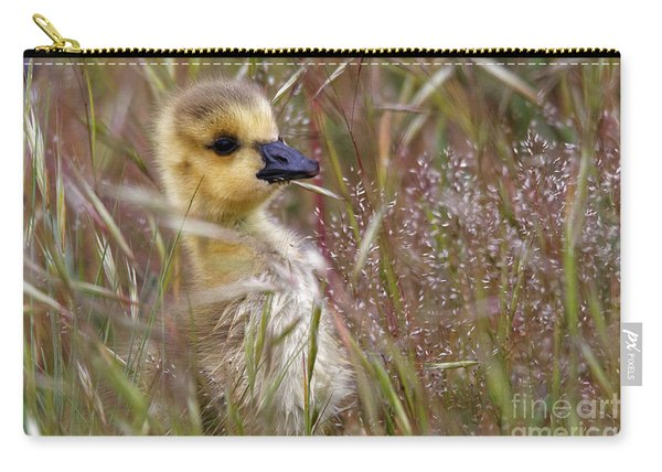 Gosling In The Meadow Carry-all Pouch