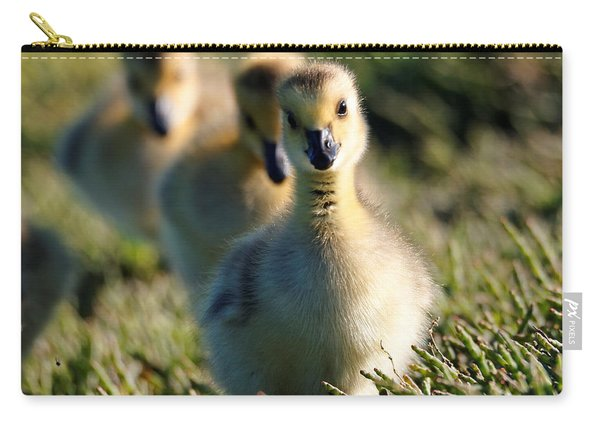 Gosling March Carry-all Pouch