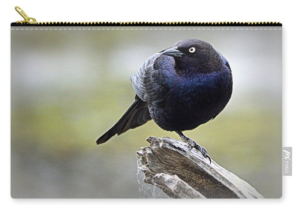 Grackle Resting Carry-all Pouch