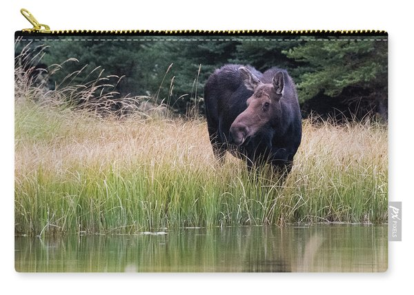 Grand Teton Moose Carry-all Pouch