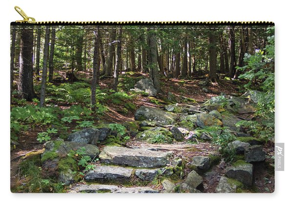 Granite Steps, Camden Hills State Park, Camden, Maine -43933 Carry-all Pouch