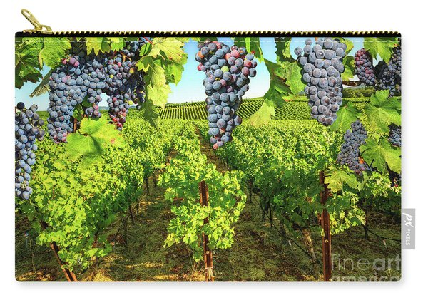 Carry-all Pouch featuring the photograph Grape Plantation Napa Valley by Benny Marty
