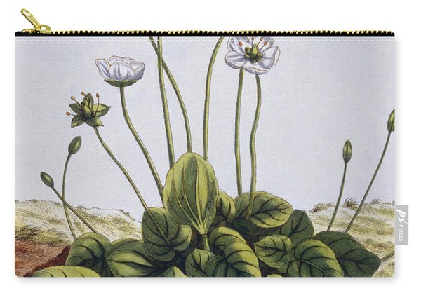 Grass Of Parnassus Carry-all Pouch
