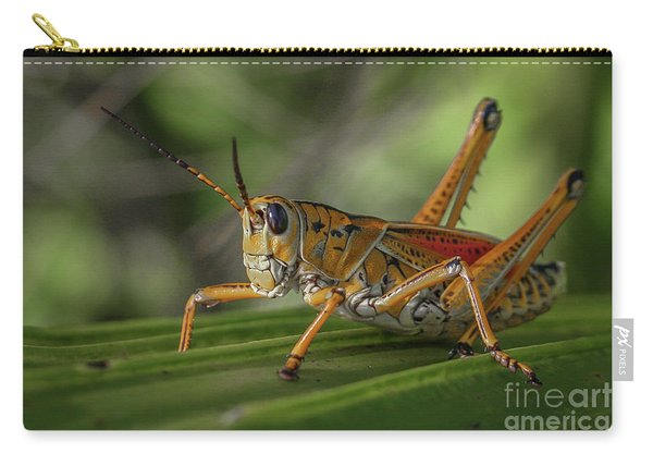 Carry-all Pouch featuring the photograph Grasshopper And Palm Frond by Tom Claud