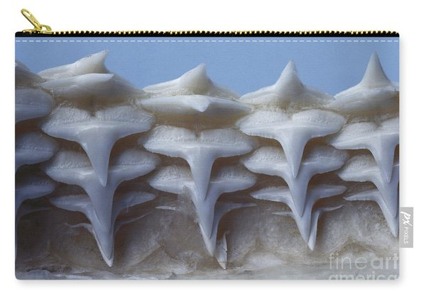 Gray Reef Shark Teeth Carry-all Pouch