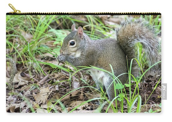 Gray Squirrel Eating Carry-all Pouch