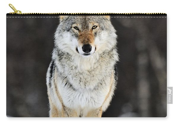 Gray Wolf In The Snow Carry-all Pouch