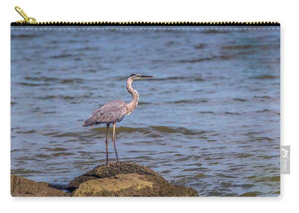 Great Blue Heron Gaze Carry-all Pouch