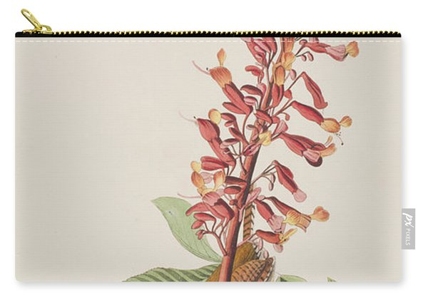 Great Carolina Wren Carry-all Pouch