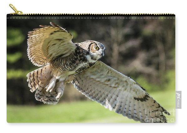 Great Horned Owl-2347 Carry-all Pouch