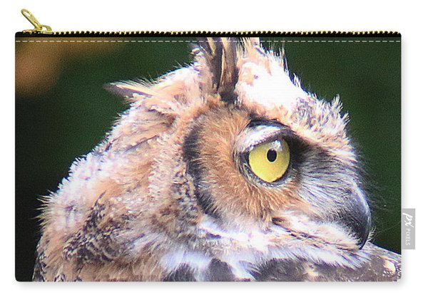 Carry-all Pouch featuring the photograph Great Horned Owl Portrait by William Selander