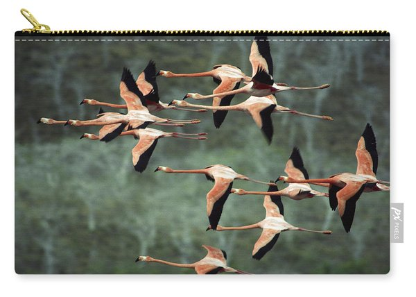 Greater Flamingo Phoenicopterus Ruber Carry-all Pouch