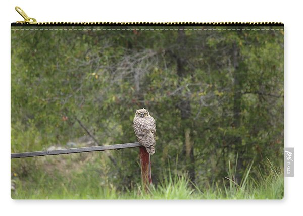 Greathornedowl2 Carry-all Pouch