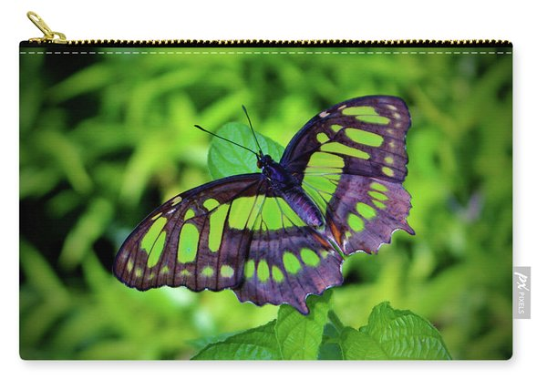 Green And Black Butterfly Carry-all Pouch