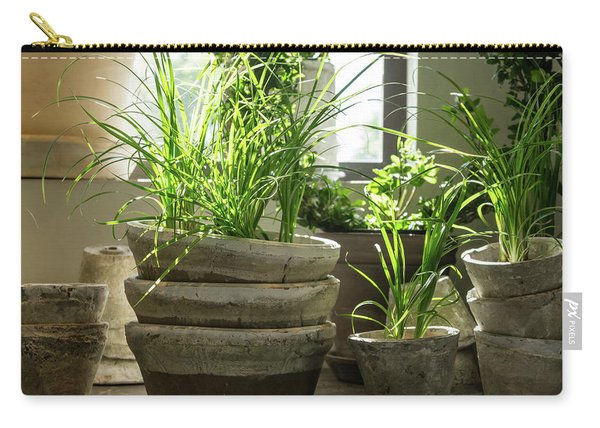 Green Plants In Old Clay Pots Carry-all Pouch