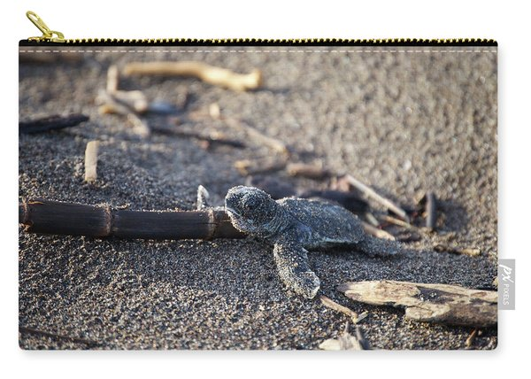 Green Sea Turtle Hatchling Carry-all Pouch