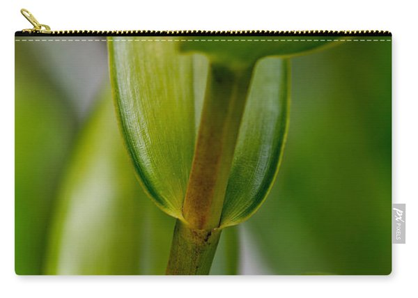 Green Stork Carry-all Pouch