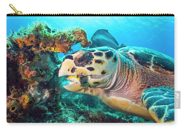 Green Turtle Dining Carry-all Pouch