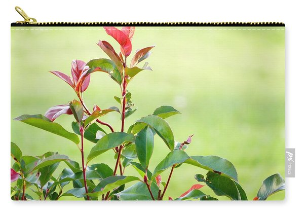 Greenery And Red Carry-all Pouch
