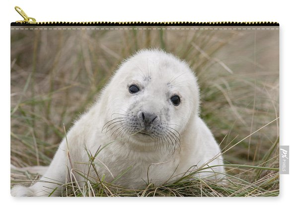 Grey Seal Pup Carry-all Pouch