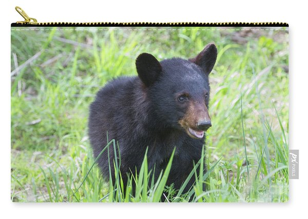 Grin And Bear It Carry-all Pouch