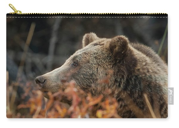 Grizzly Bear Portrait In Fall Carry-all Pouch