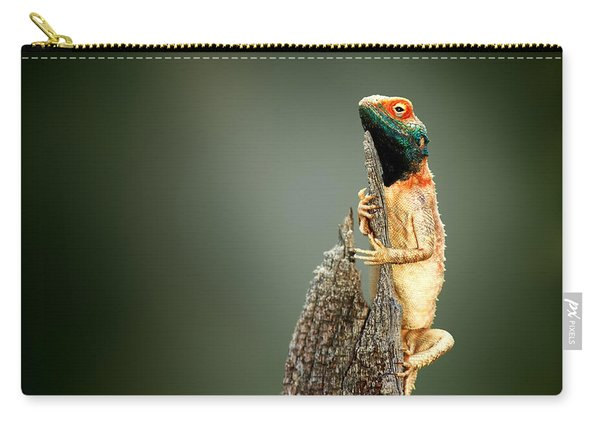 Ground Agama Sunbathing Carry-all Pouch