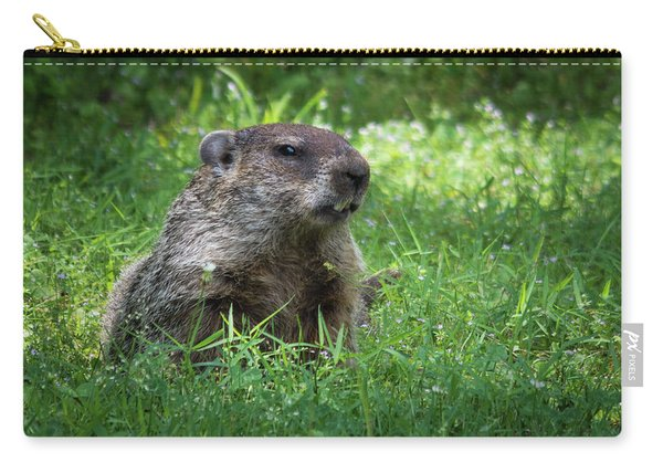 Groundhog Posing  Carry-all Pouch