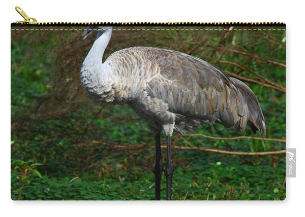 Guarding The Nest Carry-all Pouch
