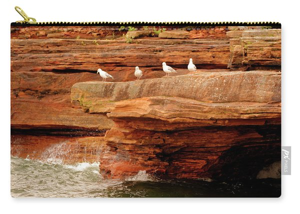 Gulls On Outcropping Carry-all Pouch
