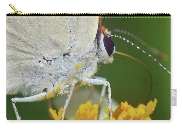 Hairstreak Closeup Carry-all Pouch