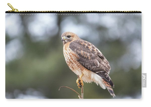 Hal The Hybrid Portrait 3 Carry-all Pouch