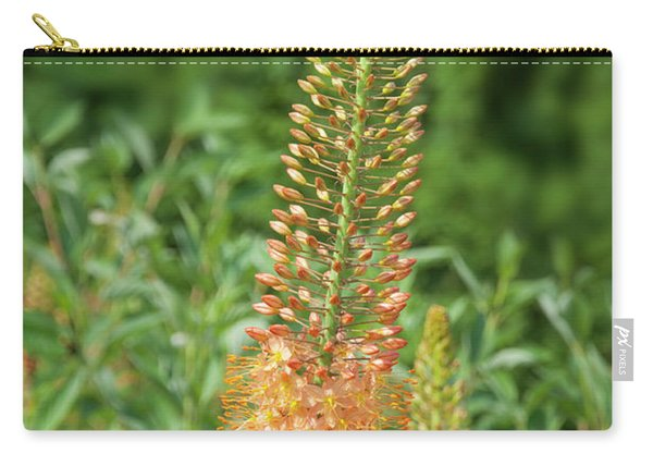 Half Way In Bloom - Longwood Gardens Carry-all Pouch
