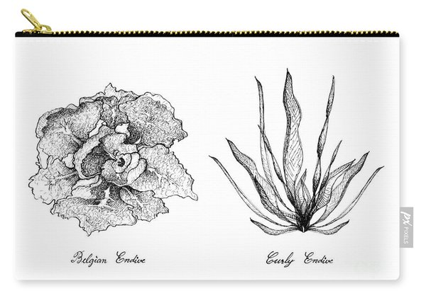 Hand Drawn Of Curly Endive And Belgian Endive Carry-all Pouch